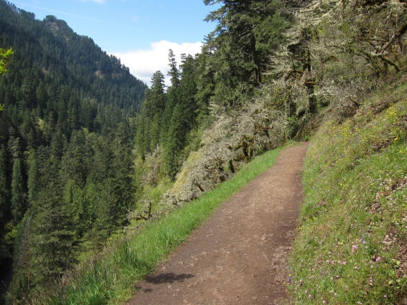 Some of the trail is scenic, but easy, walking....