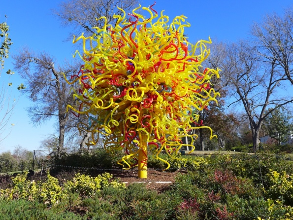 chihuly 15