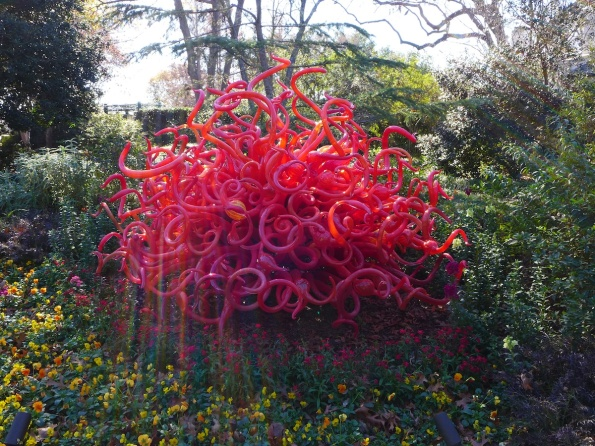 chihuly 16