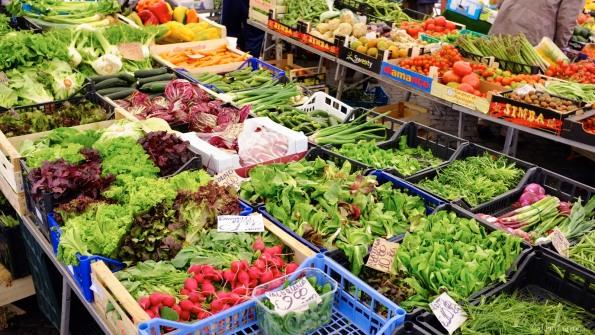 Lots of fresh vegetables