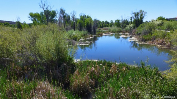 The Bear River wetlands are well maintained and scenic