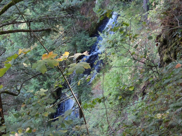 Of course, there was a waterfall- in this case, Coopey Creek