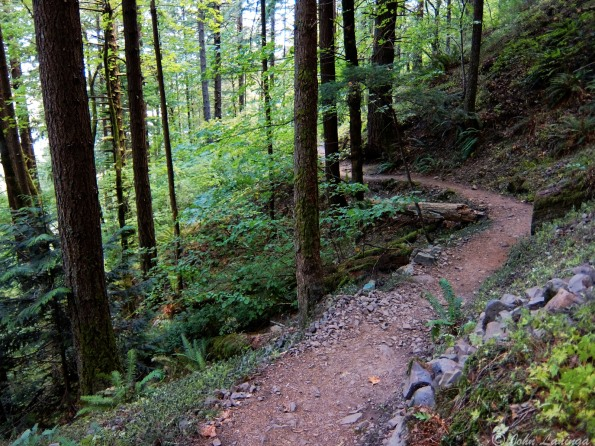 The trail is good, mostly uphill