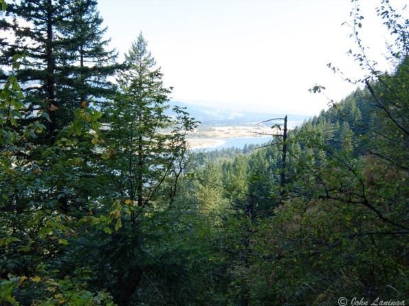 A view back to the Columbia River
