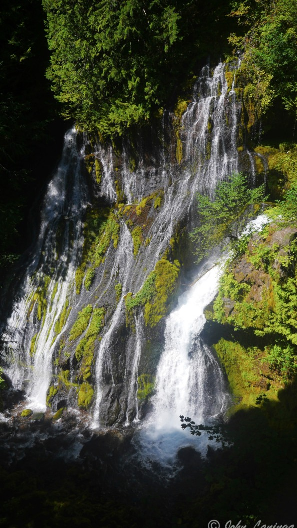 Panther Creek Falls.  Amazing!