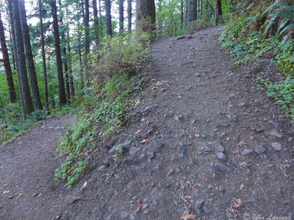 The switch back gives some idea of the steepness of this trail.