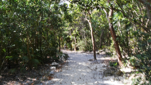 Nature Trail on Coco Cay