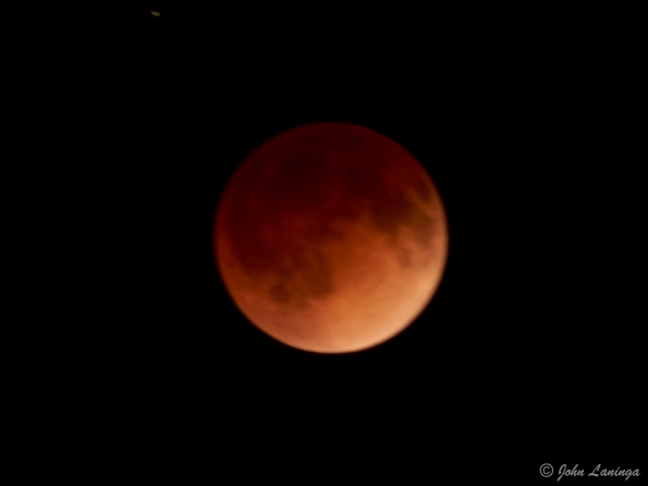 A bit out of focus, but here it is - the blood moon
