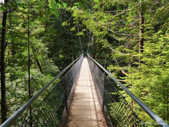 Suspension Bridge over Drift Creek Falls