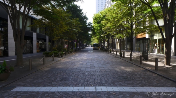 A relatively calm street on the way to the Ginza