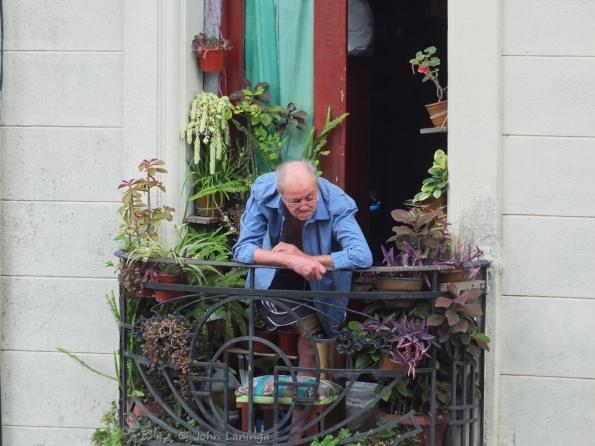 """Our """"neighbor"""" across the street"""