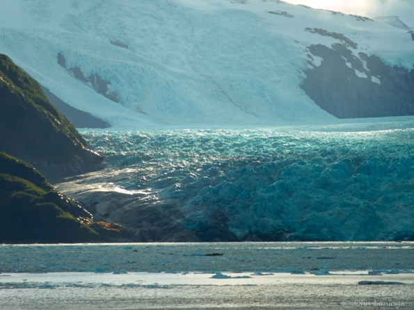 Sun highlights the Skua glacier
