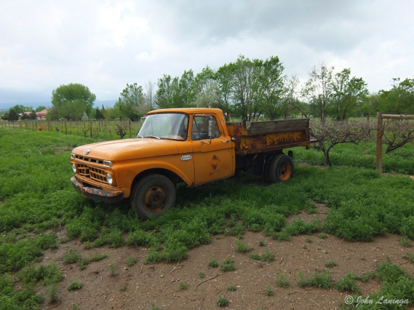 An old truck in the vineyard