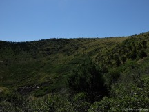 Looking up to the rim, from the parking lot