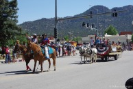 Horses, mules and wagons