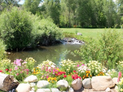 A view of the river inside the park, lots of flowers